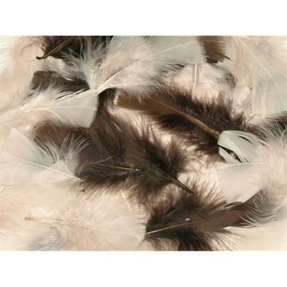 NATURAL FEATHERS 25G
