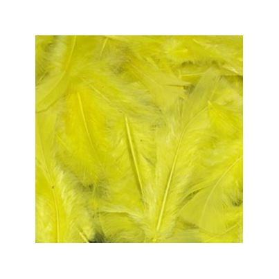 FEATHERS YELLOW 20G