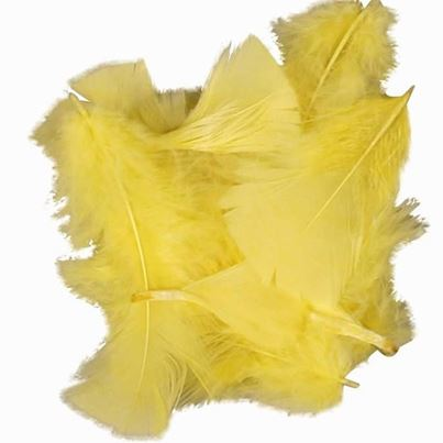 FEATHERS YELLOW  COLOURS 50G